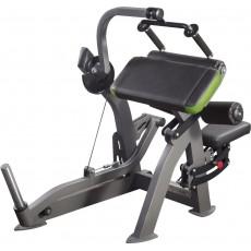 Trigalvio žasto treniruoklis (tricepso)  XR209